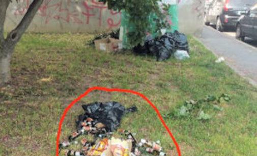VOGHERA 12/05/2015: Bottiglie sparse sulle aiuole. Un lettore: città piena di maleducati