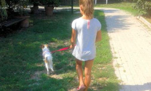 VOGHERA 16/08/2015: Adottata Vicky la cucciola trovata legata nei giardini della stazione
