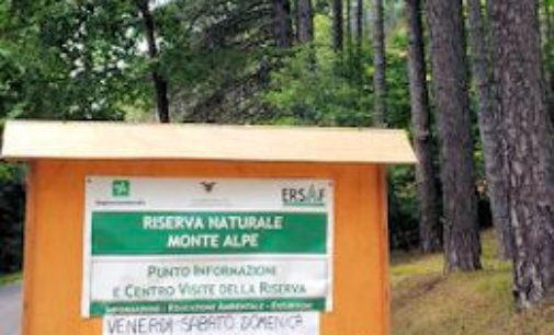 MENCONICO 16/08/2015: Oggi alla Riserva Naturale Monte Alpe la giornata degli Alberi