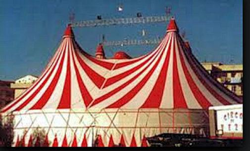 VOGHERA 30/09/2015: Circo. Enpa e Lav chiedono al Comune un regolamento più restrittivo