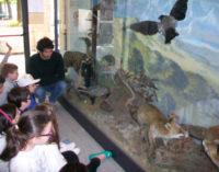VOGHERA 26/11/2015: Il Museo di Scienze naturali al convegno nazionale dei Musei scientifici
