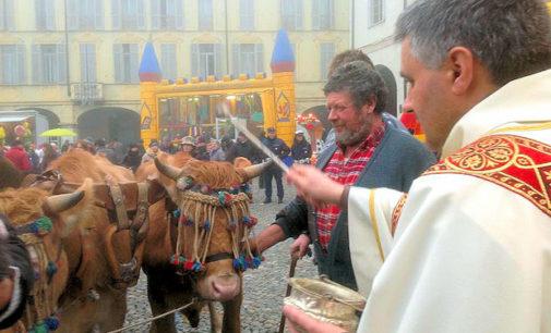 VOGHERA 14/01/2016: Domenica in piazza Duomo c'è la benedizione degli animali e del fuoco