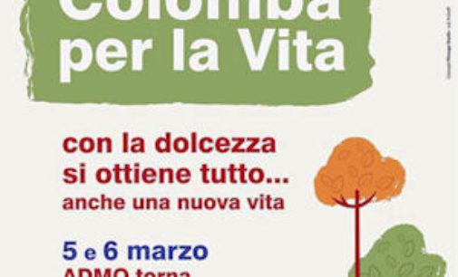 VOGHERA 02/03/2016: Sabato in piazza Duomo le Colombe dei Donatori di Midollo Osseo