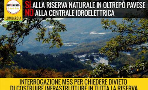 BRALLO 24/03/2016: Centrale idroelettrica sul torrente Avagnone. Il M5s dice No