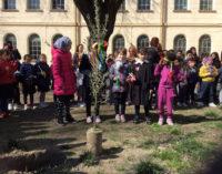 VOGHERA 24/03/2016: Scuola. Alla Dante celebrata la Settimana della Pace e dell'Amicizia tra i Popoli