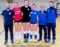 """PAVIA 17/03/2016: Pallavolo. 5 atleti della provincia in corsa verso """"allori"""" Regionali e Nazionali"""