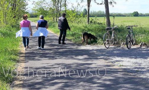 VOGHERA 25/04/2016: Allarme Lav. Presunte esche killer segnalate lungo la Greenway. Allarme anche nei pressi della Stazione iriense