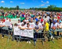 RETORBIDO 29/04/2016: Pirolisi. Il Comitato per il No organizza un grande raduno per il 22 maggio. Ecco perchè…