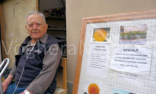 VOGHERA 11/04/2016: E' Primavera. Guido Schiavo, il pensionato dal pollice verde, è tornato a curare le aiuole pubbliche e a regalare i semi. Ma quest'anno… occhio, c'è anche la telecamera contro i furti (di rose)