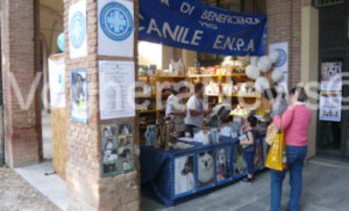 VOGHERA 15/04/2016: Cani e adozioni Sud-Nord. Dibattito Enpa stasera alla Piscina