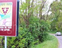 TORRAZZA COSTE 06/04/2016: La Strada del vino e dei sapori dell'Oltrepo pavese al Vinitaly 2016