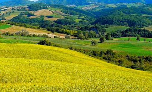 BRONI 24/06/2016: L'Oltrepò vitivinivcolo patrimonio dell'Unesco. Oggi il lancio della procedura per la candidatura