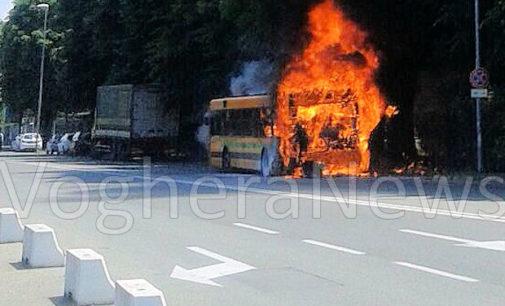 VOGHERA 06/06/2016: (FOTO VIDEO) Autobus in fiamme in viale Martiri. Mezzo distrutto insieme a un albero. Grande lavoro dei pompieri che pur impegnati in altro intervento sono accorsi evitando il peggio