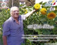 VOGHERA 13/06/2016: Guido Schiavo. Una targa per ringraziare il pensionato delle gioia che regala con la cura del verde pubblico