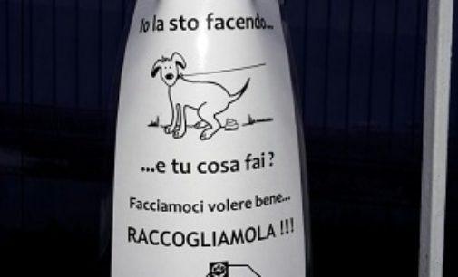 VOGHERA 17/12/2016: Sporcano con i cani… e se li riprendi ti minacciano pure. L'indignazione di una lettrice