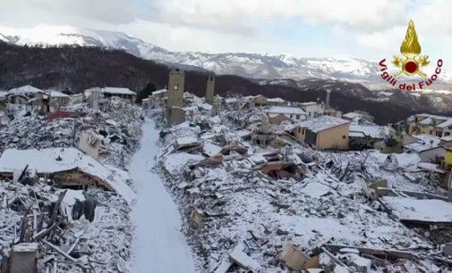 """VOGHERA 30/01/2017: Bovini terremotati. Una veterinaria ha avviato una """"colletta"""" per donare rotoballe di fieno alle stalle sconquassate di Amatrice"""
