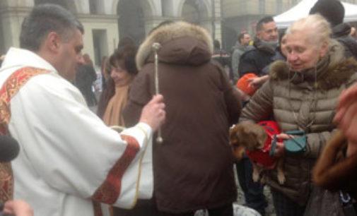 VOGHERA18/01/2017: Domenica la Benedizione degli animali. Iniziative della Croce Rossa in piazza Duomo