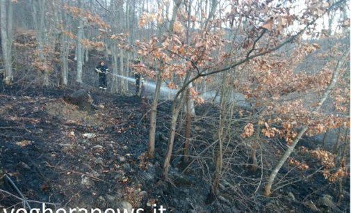 VARZI 30/04/2017: Emergenza incendi. Nuovo rogo stamane nei boschi della Valle Staffora. Pochi danni ma (anche per questo) si teme il dolo