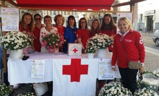 VOGHERA 11/05/2017: Sabato e Domenica. Margherite benefiche in piazza con la Croce Rossa