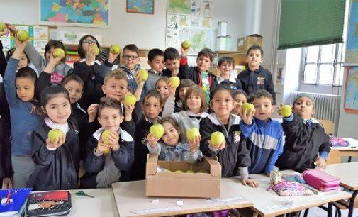 """VOGHERA 09/05/2017: Scuola. """"Frutta e Verdura per la sana alimentazione. Progetto Europeo all'Ic di via Marsala. Ecco cosa mangiano gli alunni della Primaria De Amicis"""