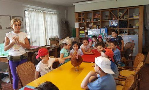 VOGHERA 29/05/2017: I bambini della Primaria De Amicis in visita alla fattoria didattica