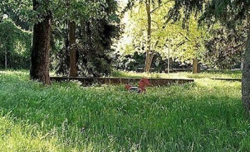 VOGHERA 16/05/2017: Via Bellini. Un lettore: Nei giardini i giochi sono sommersi dall'erba