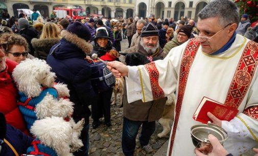 """VOGHERA 15/01/2018: Ieri la Benedizione degli Animali in piazza Duomo. Intanto il Canile/Gattile Enpa """"scoppia"""" per i troppi abbandoni. Urgono famiglie che adottino cani e gatti"""