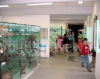 VOGHERA 05/03/2018: Scuole chiuse (per elezioni) Museo aperto. Oggi l'iniziativa per i bambini dai 6 ai 12 anni