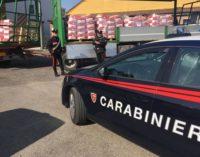 """VOGHERA 20/04/2018: Maxi furto ad """"Apsov Sementi"""". I carabinieri recuperano 100mila euro di concime agricolo"""