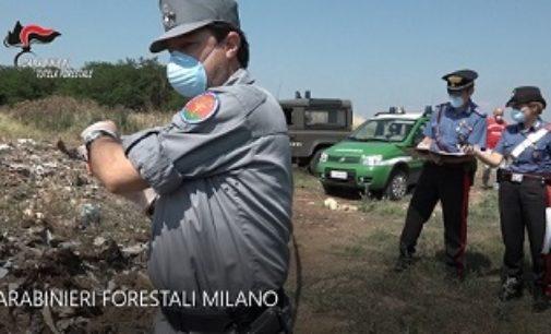 PAVIA 26/07/2018: Traffico illecito di rifiuti. I carabinieri forestali in azione anche in provincia di Pavia