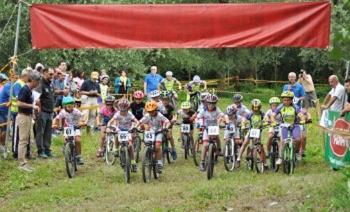 PANCARANA 04/07/2018: Ciclismo. Domenica gara ciclistica di MTB al Bosco Arcadia