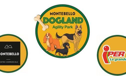 MONTEBELLO: Nasce Montebello Dogland. Il Centro commerciale Montebello crea un'area dedicata ai cani che comprende anche una zona per l'Agility dog