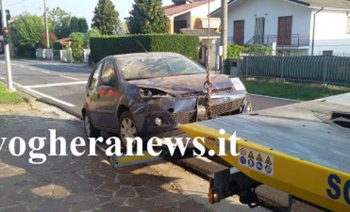 BORGO PRIOLO CASTEGGIO 06/09/2018: Cinghiale attraversa e l'auto si ribalta. Ferita una donna. Ieri ragazzino investito a Casteggio
