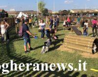 """MONTEBELLO 24/09/2018: Inaugurata Domenica """"Dogland"""" del Centro Commerciale Montebello: l'area dedicata allo sgambamento cani con zona per l'""""Agility"""""""