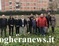 VOGHERA 14/11/2018: 300 nuove piante messe a dimora nelle scuole e in città. A Medassino cresceranno due nuovi boschetti