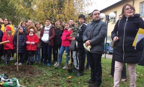 VOGHERA 21/11/2018: Per la Giornata dell'Albero tour nelle scuole del Presidente del Consiglio Affronti e dell'assessore Panigazzi
