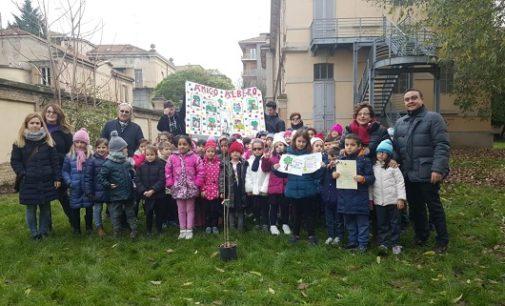 """VOGHERA 27/11/2018: """"Festa dell'albero"""" alla primaria De Amicis"""