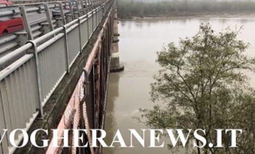 BASTIDA PANCARANA 05/11/2018: Piena del Po (VIDEO). Il Po al ponte di Bastida-Bressana alle ore 9.30 di oggi