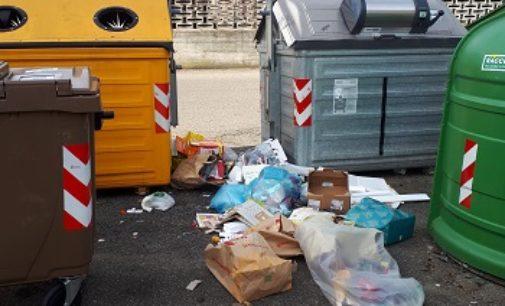 VOGHERA 15/01/2019: Raccolta differenziata. Ancora rifiuti a terra. La lettera di protesta di alcuni residenti