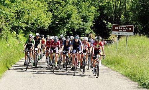 ZAVATTARELLO 07/02/2019: Ciclismo. La Granfondo del Penice-Ti Rex modifica i tracciati per dare più sicurezza
