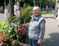 VOGHERA 12/03/2019: Danneggiate le rose. Nonno giardiniere Guido Schiavo sporge denuncia. Non è l'unico caso in città