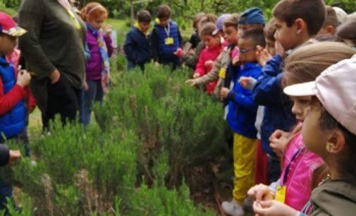 """VOGHERA 21/05/2019: Alla Scuola Primaria De Amicis si coltivano i """"pensieri"""""""