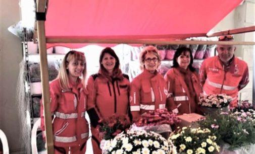 VOGHERA 12/05/2019: Festa della Mamma. Anche oggi in piazza le margherita Croce Rossa