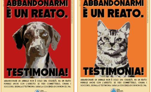 PAVESE OLTREPO 12/06/2019: Abbandonare cani e gatti è un reato. ENPA lancia la campagna di sensibilizzazione. Chi assiste ad un abbandono lo denunci!
