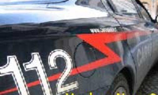 MONLEALE 25/09/2020: Smerciava motoseghe rubate. Denunciati un 20enne e una 16enne vogheresi