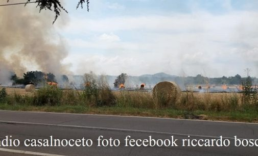 RIVANAZZANO 08/07/2019: Vasto incendio nei campi. Intaccata anche la strada Chiusa la Sp196