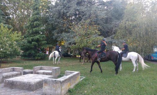 VOGHERA 01/08/2019: Controllo del territorio. Per la prima volta carabinieri a cavallo anche in città. Arresto uno spacciatore
