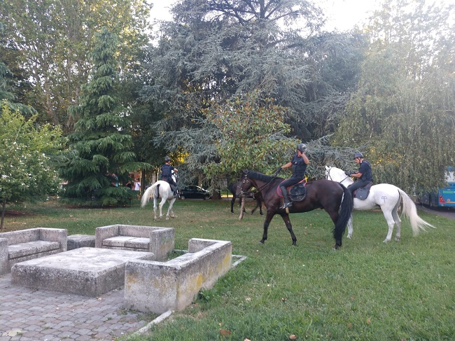 carabinieri a cavallo voghera 600