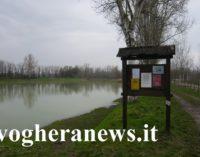 LUNGAVILLA 16/08/2019: Tragedia a Ferragosto nella cava del parco palustre. Giovane di Voghera muore affogato