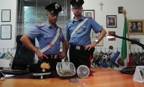 LUNGAVILLA 19/09/2019: Detenzione ai fini di spaccio di sostanze stupefacenti. Arrestato un 17enne